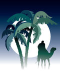 Desert night. Palm trees, man riding on camel, sky and moon in the background Stock Photos