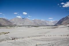 Desert of Nubra valley at Ladakh, India Stock Images