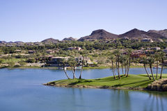 Desert oasis. Beautiful desert oasis in Las Vegas Royalty Free Stock Photos