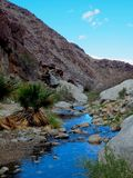Desert Oasis at Anza Borrego in California. A river running through the desert with palms at Anza Borrego in Southern California royalty free stock photos