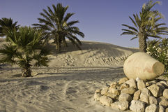 Desert Oasis. A green oasis on the djerba desert with an amphora Stock Image
