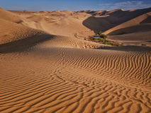 Desert and oasis royalty free stock photography