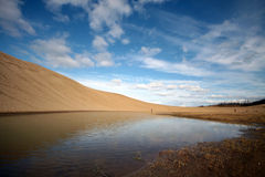 Desert oasis under blue sky Royalty Free Stock Photo