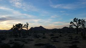 Desert panning shot at sunset in the mountains 4k stock video