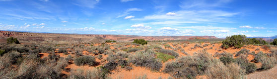 Desert Panorama Stock Photography