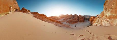 Desert. Panorama of the canyon in the desert. Sinai, Egypt Royalty Free Stock Photos