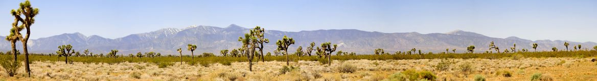 Desert panorama Stock Photos