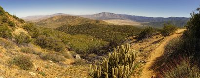 Desert panorama with a nice view into the valley trail and cactus royalty free stock photos