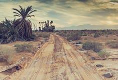 Desert park Evrona near Eilat, Israel Stock Image