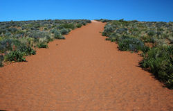 Desert Path. Walking trail in the Desert of Arizona Royalty Free Stock Images