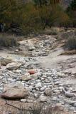 Desert Path Stock Image