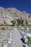 Desert Pathway royalty free stock photography