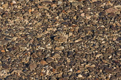 Desert Pavement Royalty Free Stock Photography