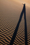 Desert person. Long shadow casting in the ripples of a sand dune in the desert Stock Image