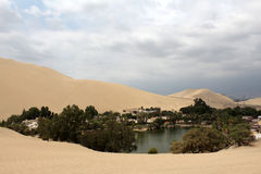 Desert in peru. The big oasis at the ica desert Stock Photos