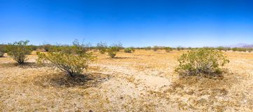 Desert Plain in Mojave California Stock Image
