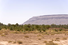 Desert plain near the Sahara Royalty Free Stock Images