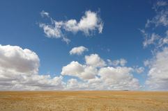 Desert plain under a blue sky. A endless plain desert below a perfect blue sky royalty free stock image