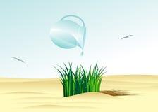 Desert. Stock Images