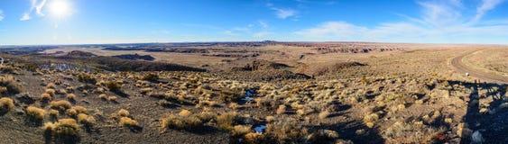 Desert in Arizona. Desert with desert  plants in Arizona, USA Stock Images
