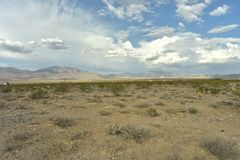 Desert plants, blue cloudy sky over Mojave Desert landscape town of Pahrump, Nevada, USA stock photography