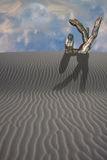 Desert with pointing statue Royalty Free Stock Image