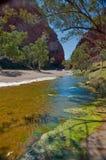 Desert pond stock photos