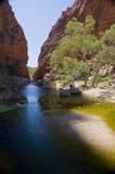 Desert pond Stock Images