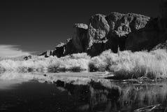 Desert Pond Royalty Free Stock Photography
