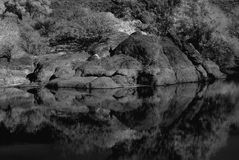 Desert Pond Royalty Free Stock Images