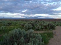 Desert prairie stock images