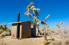 Desert Privy. With Joshua trees on a blue sky day Stock Images