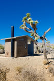 Desert Privy Vertical. With joshua tree on a blue sky day Royalty Free Stock Image