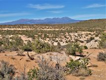 Desert Public Land near Blanding, Utah. Public land provides numerous hiking opportunities in Utah. This area is near the town of Blanding royalty free stock image