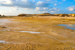 The desert after raining. Oman Royalty Free Stock Images