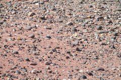 Desert red dry soil and stones texture Stock Images