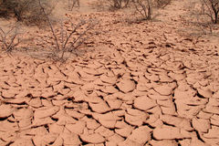 Desert red dry soil texture Stock Photography