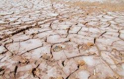 Desert red dry soil texture Royalty Free Stock Photo