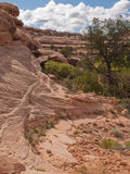 Desert red sandstone canyon with detail Stock Photo