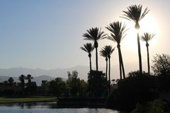 Desert Resort Stock Photography