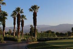 Desert Resort Stock Images