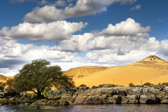Desert and river Stock Photography