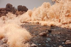 Desert River. River in the winter Arizona desert mountains Stock Photo