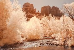 Desert River Stock Photography