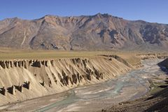 Desert River Stock Image