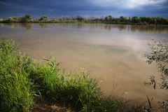 Desert river after storm Stock Photography