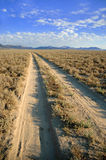 Desert Road. Dirt road in the desert leading into the horizon with mountains in the background Royalty Free Stock Image
