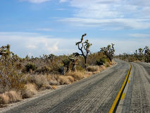 Desert road Royalty Free Stock Photos