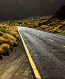 Desert road Stock Images