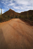 Desert Road. Dirt road in southern Arizona desert, USA Stock Photography